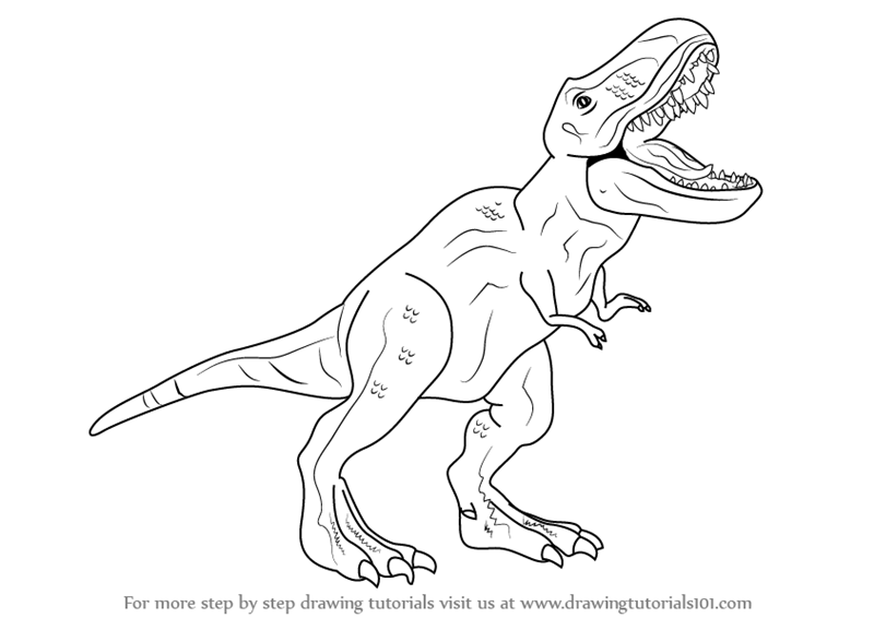 Draw T Rex Complete The T Rex Outline Drawing Furosemide