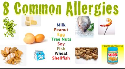 8 common items causing food allergy