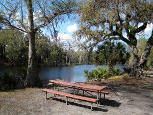 fisheating-creek