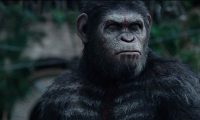 Andy Serkis Planet of the Apes