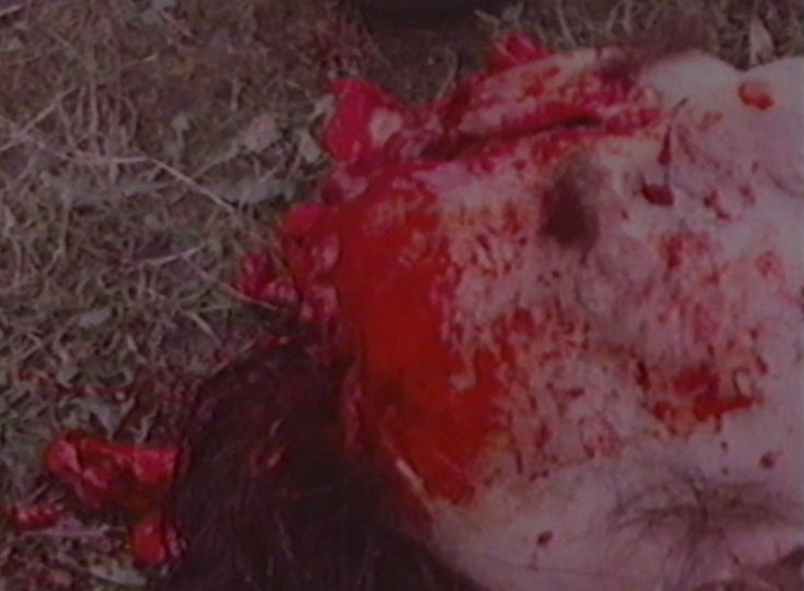 careful massacre of the bourgeoisie8 - Mr. Robot Creators Release 8-Minute 80s VHS Slasher!