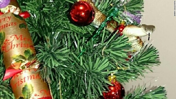 snakes on a tree 1 - Snakes on a Christmas Tree! Someone Call Sam Jackson!