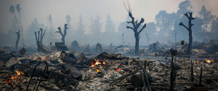 santa rosa 8 - The Very Real Horrors of Wine Country and How You Can Help