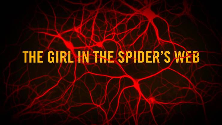 The GirlintheSpidersWebImage - The Girl in the Spider's Web Snares It's Bad Guy