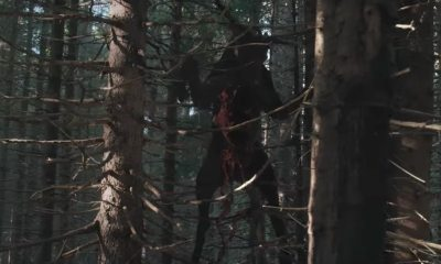 theritualbanner - Venture Into These Influential Horror Movies Set in the Woods