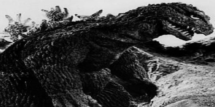King Kong vs Godzilla 2 - Fearsome Facts: King Kong vs. Godzilla (1962)