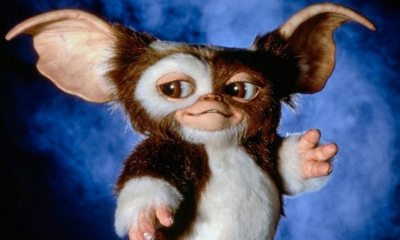 gremlins1984 - New Gremlins a Reboot, Prequel, or Sequel?