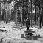 THE FOREST OF THE LOST SOULS 4 - Black and White and Stunning: THE FOREST OF LOST SOULS Poster and Trailer