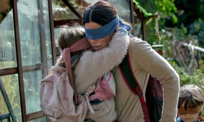 birdbox 2 - Someone Did the BIRD BOX Challenge While Driving & (Obviously) Crashed
