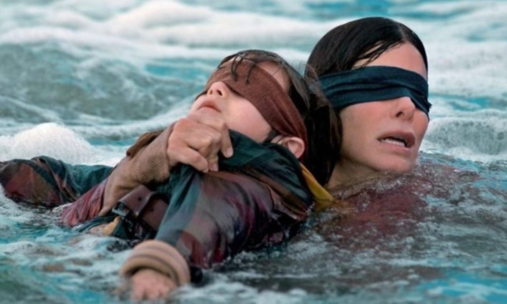 Bird Box Banner - 7 Small Details You Probably Missed in BIRD BOX