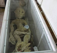 china alien s - The Seen and The Unseen: China Has the Body of an Alien on Ice
