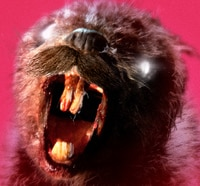 zombeavers oscar s - Eager to See the New Zombeavers Poster? Here It Is!