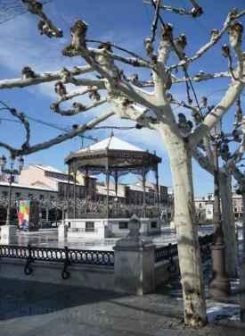 Plaza de Cervantes en invierno - Úrsula Cargill García