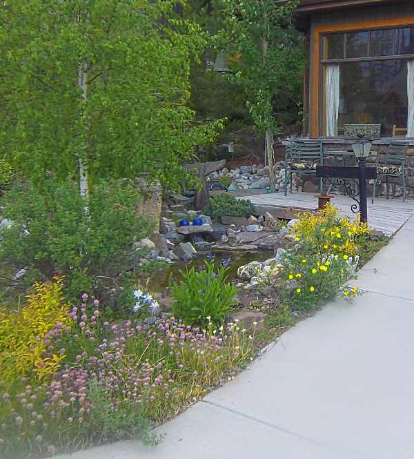 Frontyard Landscaping on Front Yard Pond  id=82924