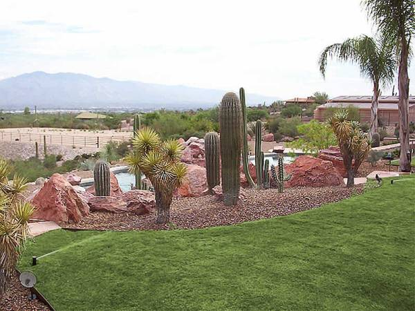 Desert Landscaping Ideas on Desert Landscape Ideas For Backyards id=36760