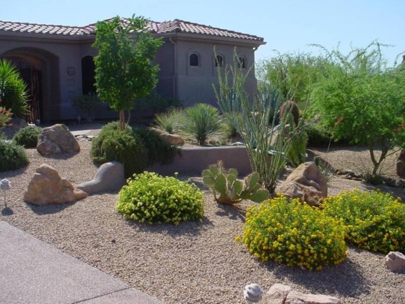 Desert Landscaping Ideas on Desert Landscape Ideas For Backyards id=13718