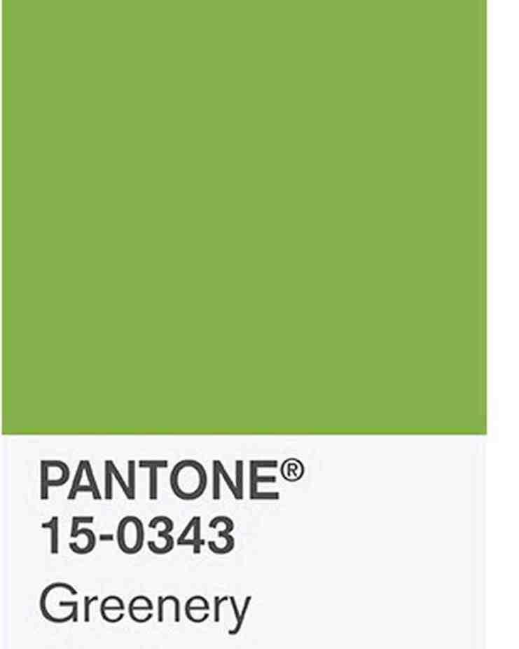 2017-pantone-color-greenery-1116_vert (1)