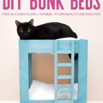 How To Build Cat Bunk Beds Dream A Little Bigger
