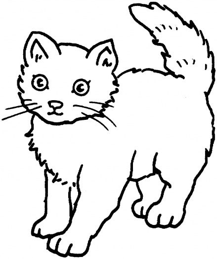 Pete Cat Coloring Baby Pages