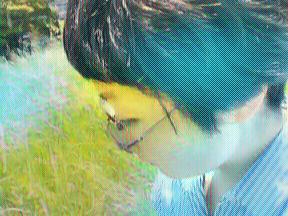 Emi Miyaoka - To be in the Summer