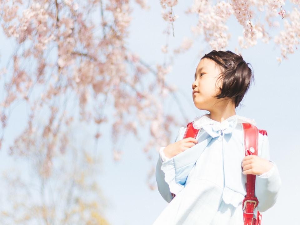 sistema scolastico giapponese