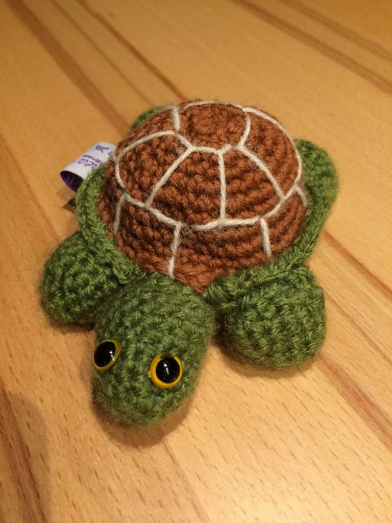 Siggi, die Schildkröte