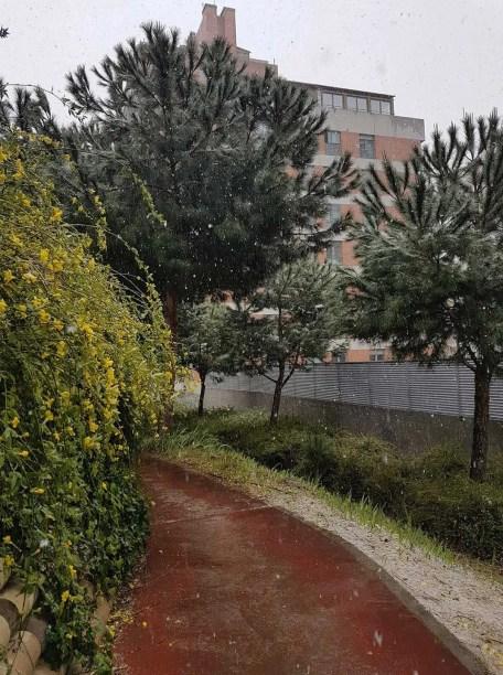 Au-Pair-Madrid-Spain-walk