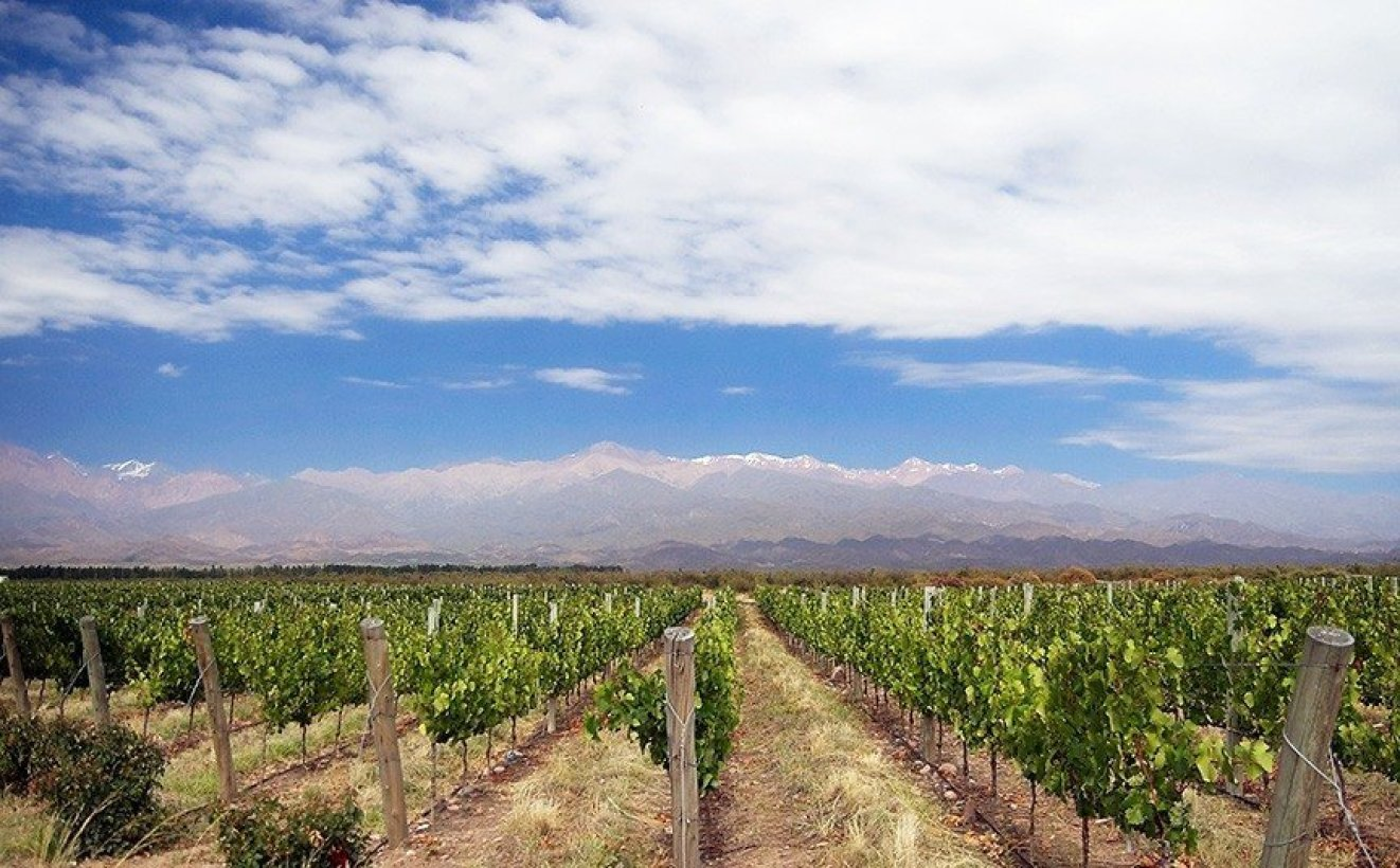Mendoza winery resort