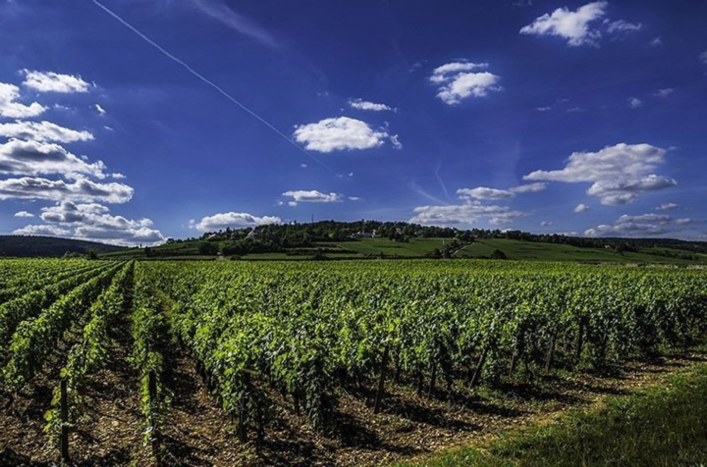 france wine valley