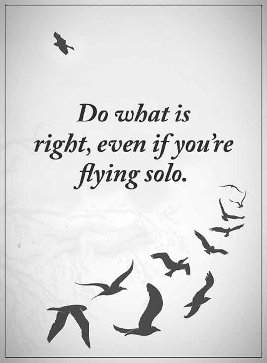 Best Inspirational Quotes Life Sayings Do What Is Right Flying Inspiration Best Inspirational Quotes