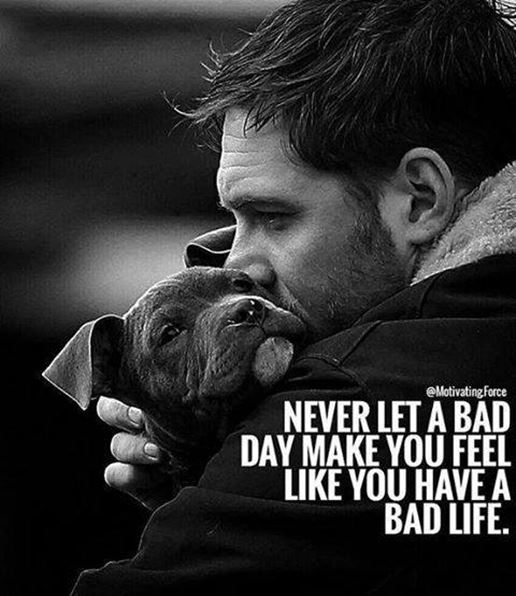 11+ Funny Inspirational Quotes 005