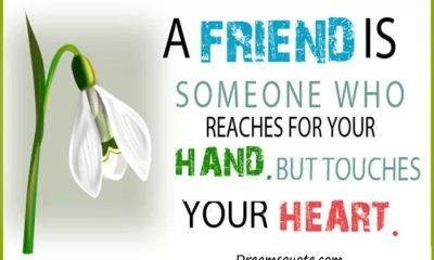 Best friendship quotes and sayings 'Friends Touches Your Heart, best friends forever