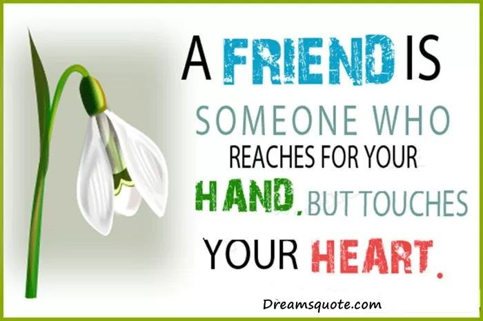 Best Friendship Quotes And Sayings U0027Friends Touches Your Heart, Best Friends  Forever