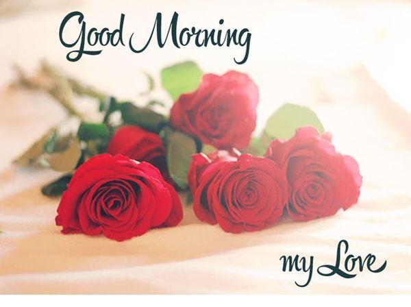Good Morning Love Quotes Sayings: Good Morning Quotes My Love Awesome Good Morning