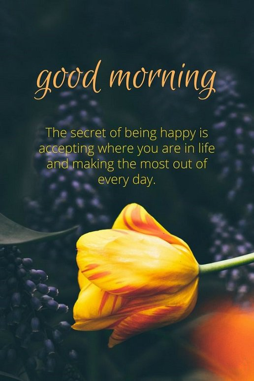 Image of: Pictures Good Morning Friends The Secret Of Life Being Happy Friends Dreams Quote Good Morning Friends The Secret Of Life Being Happy Friends