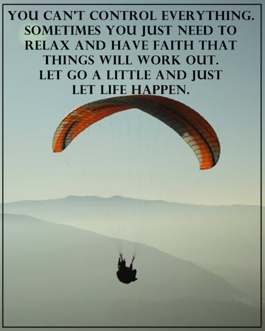 Positive Life Quotes Life Sayings You Can T Control Everything