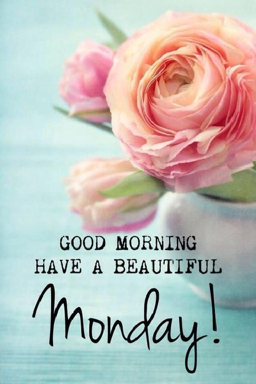 good morning quotes with images good morning pictures017