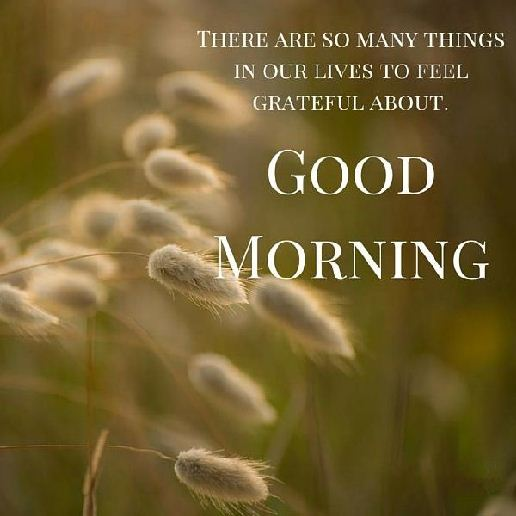 Quotecom: 35 Of The Good Morning Quotes And Images Positive Energy