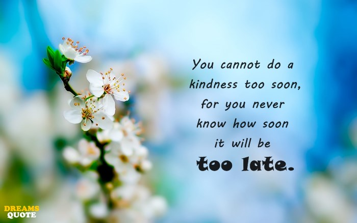 23 Kindness Quotes 4