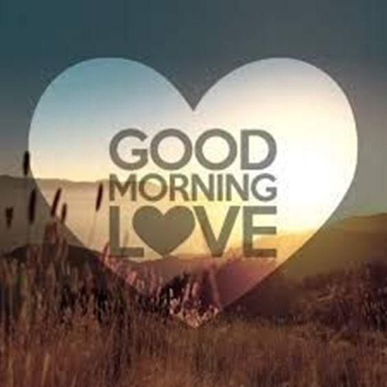 100 Good Morning Quotes With Beautiful Images 3