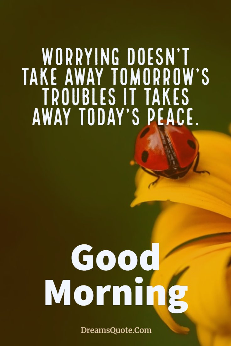137 Good Morning Quotes And Images Positive Words For Good Morning 13