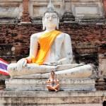 Meditation in Ayutthaya