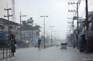 Monsoni in corso