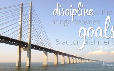Discipline is the Bridge