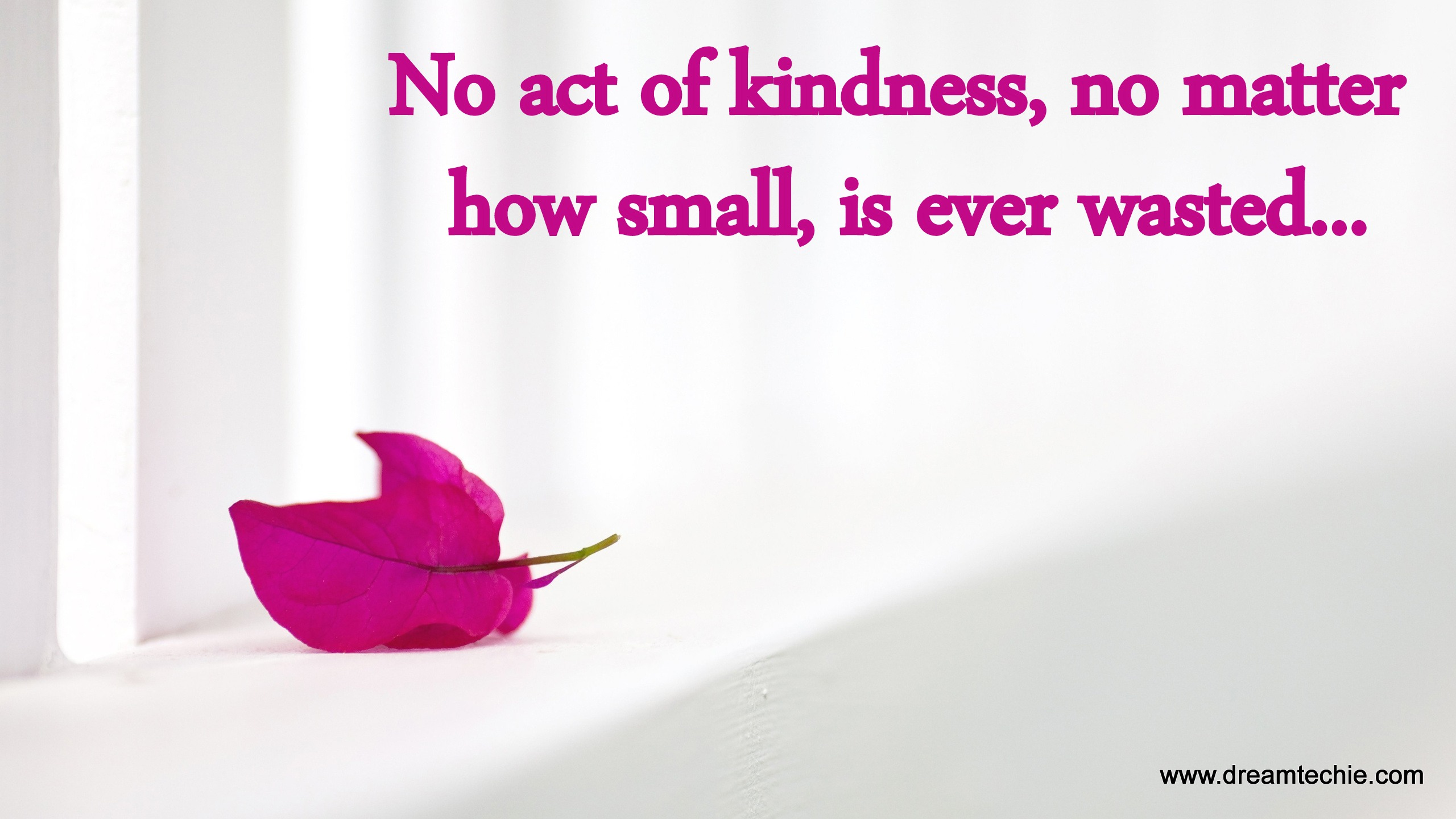 Act Of Kindness Quotes 100  Quotes For Kindness   Quote About Use Your Voice For
