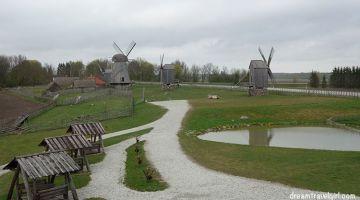 Saaremaa, an island full of surprises