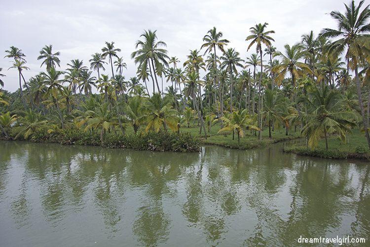 India_Munroe-island24