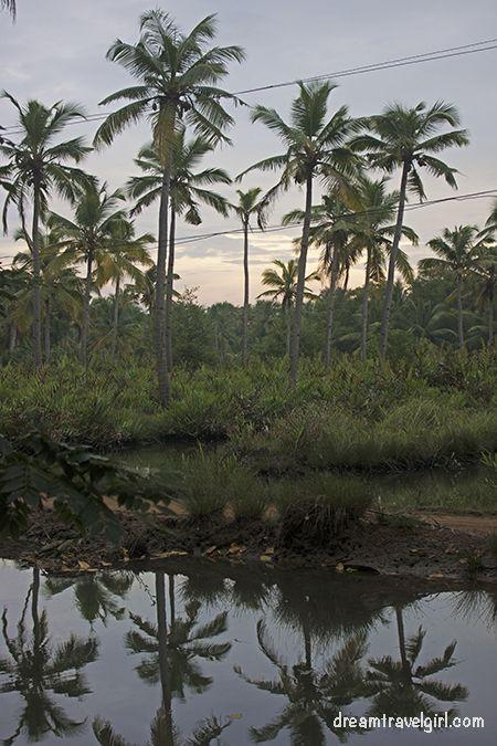 India_Munroe-island28