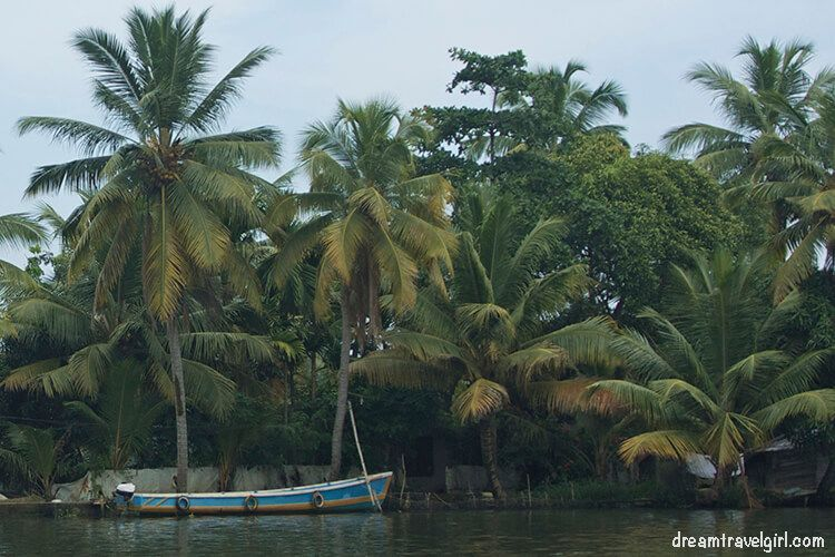 One man at the ferry stop told me that in the backwaters they use canoes as we use bikes