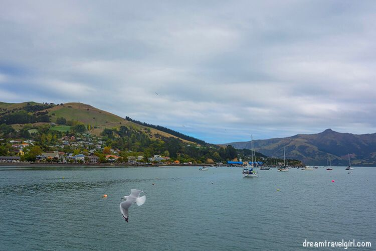 New-Zealand_Banks-peninsula05_Akaroa